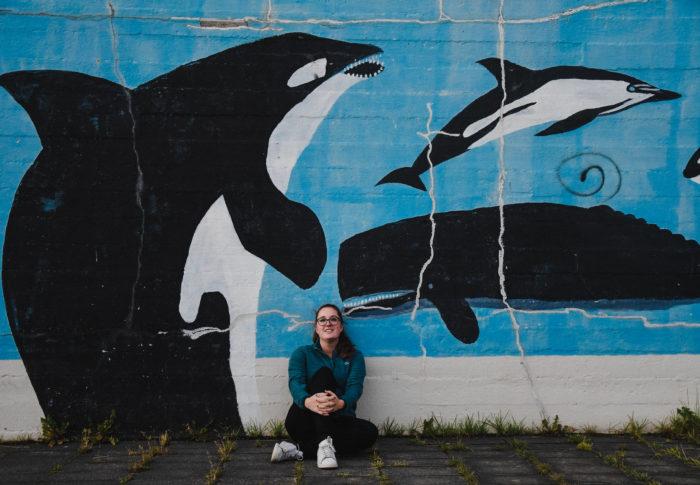 À la rencontre des baleines